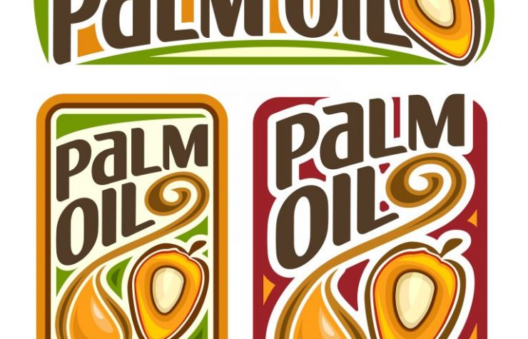 Are you Unknowingly Contributing to the Palm Oil Catastrophe?